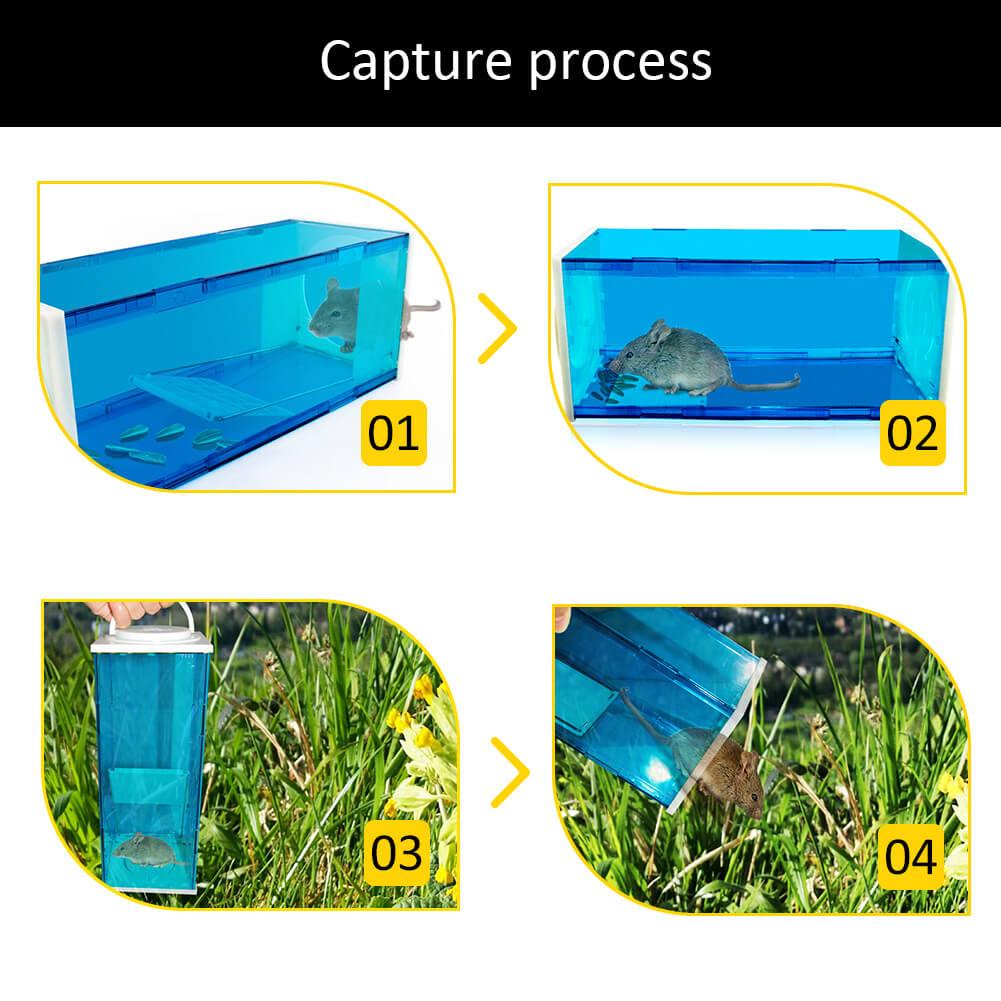 Humane rat traps
