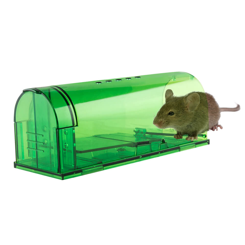 Live rodent trap