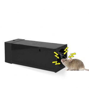 electric mouse trap